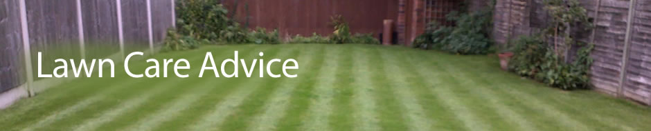 Lawn care advice in Kidderminster, by Lawn3